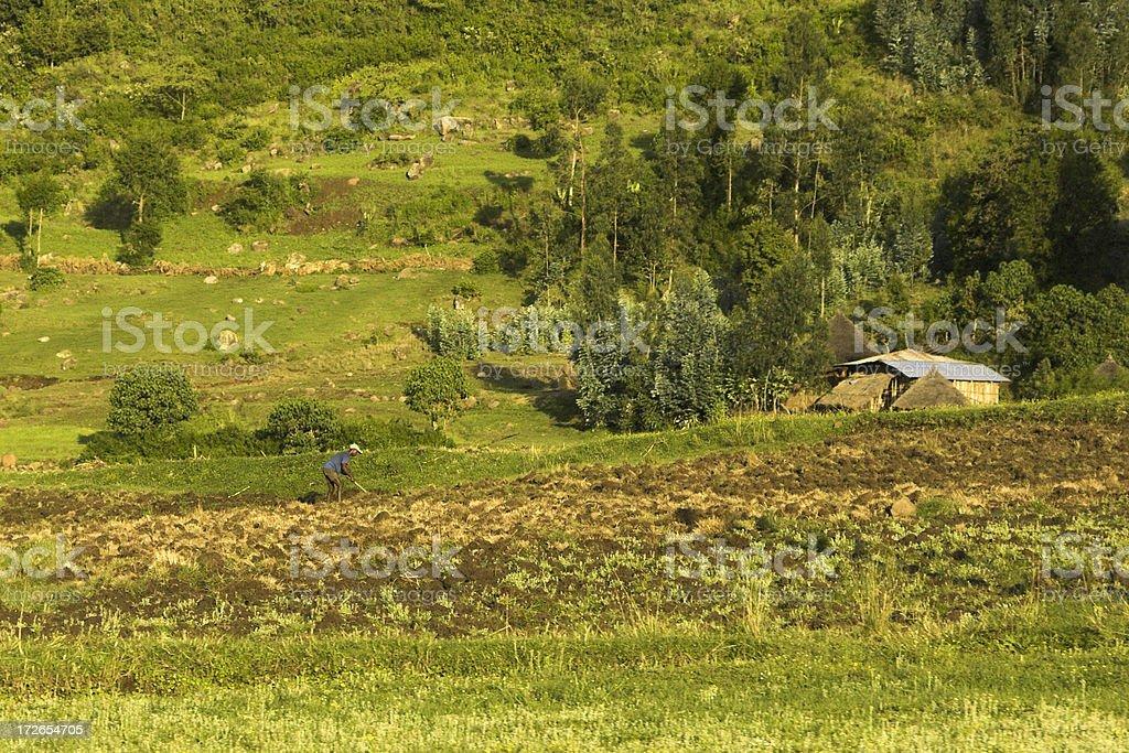 Ploughing manually royalty-free stock photo
