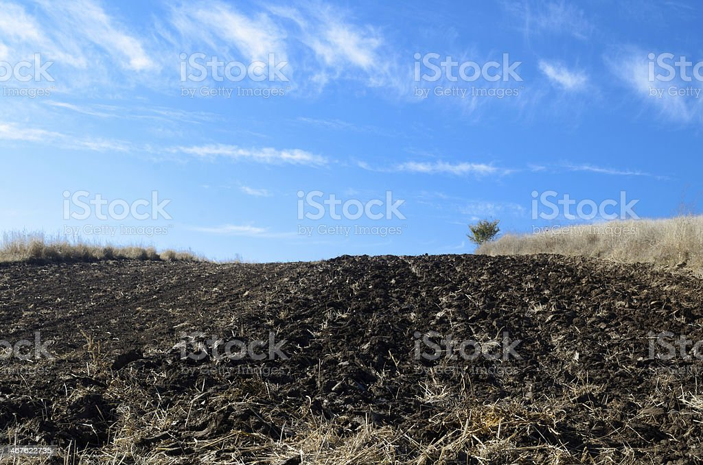 Plow field, blue sky royalty-free stock photo