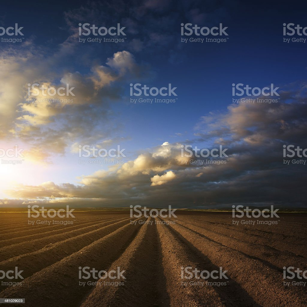 Plowed field. Beautiful agricultural landscape. royalty-free stock photo