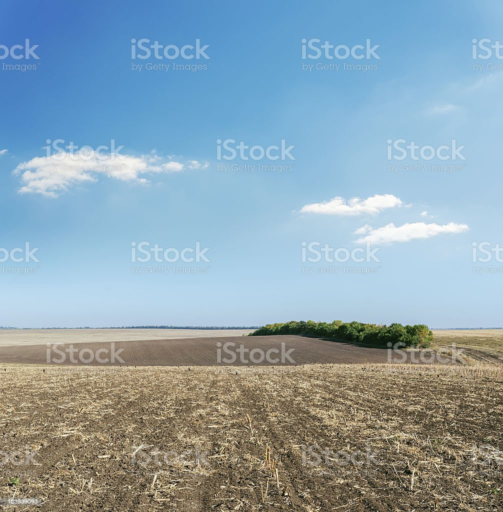 plowed field in autumn under light cloudy sky royalty-free stock photo