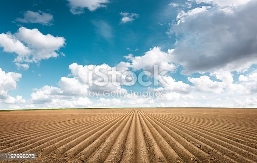 Plowed field under idyllic blue sky with white clouds.