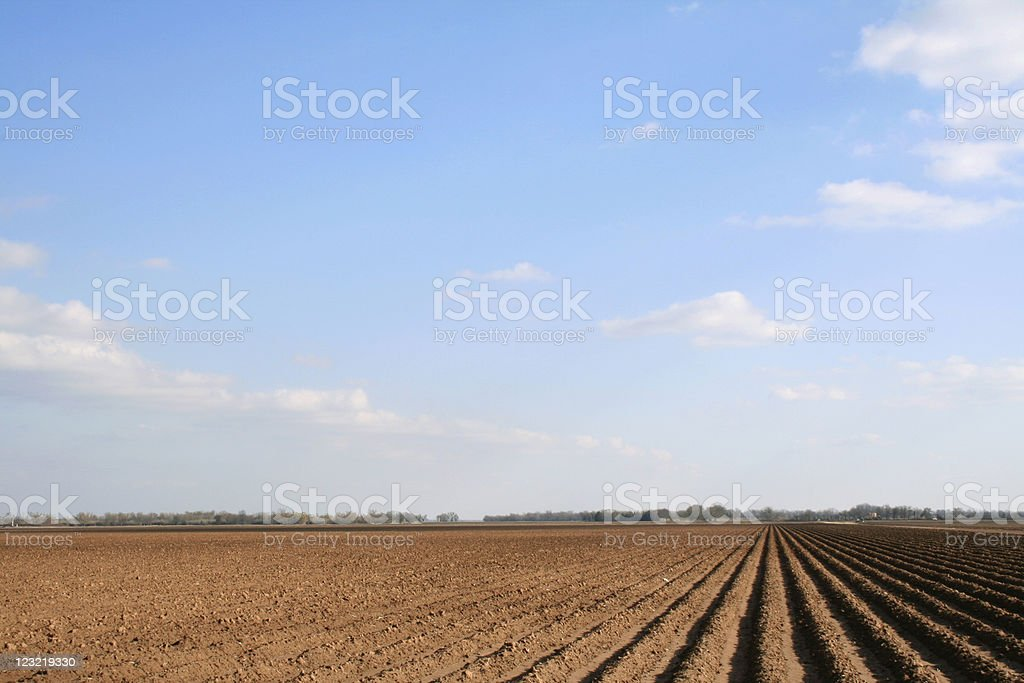 plowed field in winter - off center royalty-free stock photo