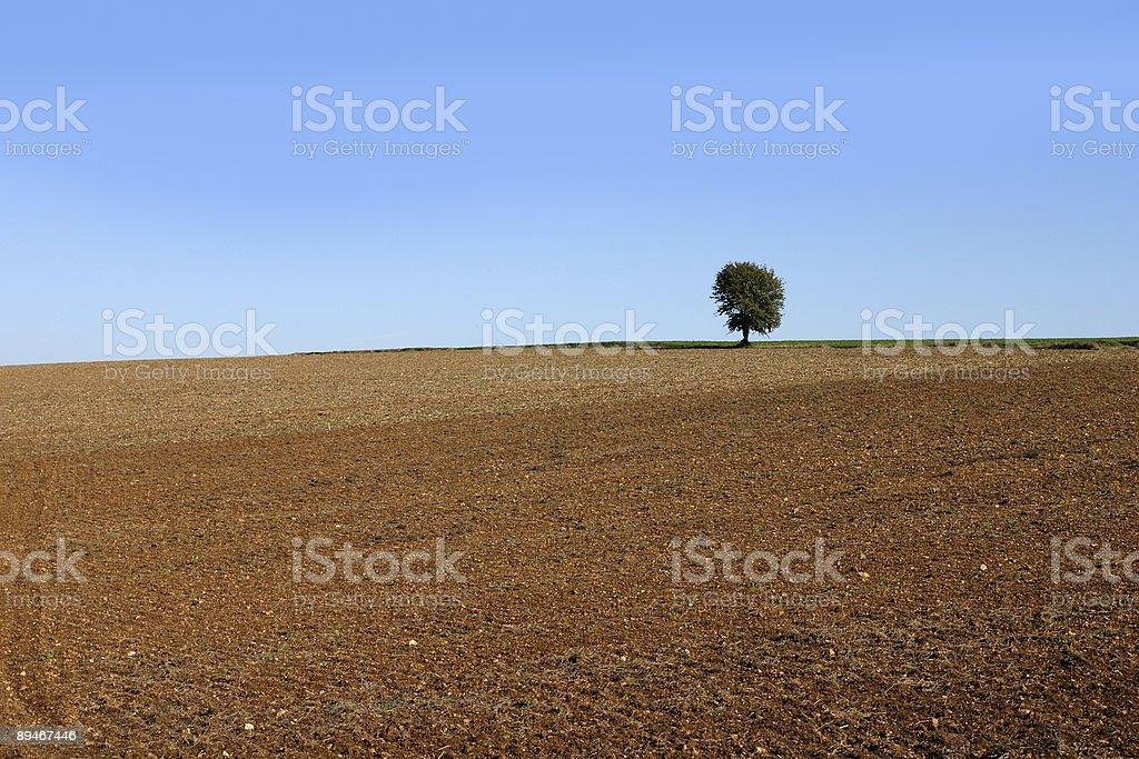 plowed field stock photo