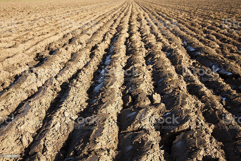 Plowed field XXXL royalty-free stock photo