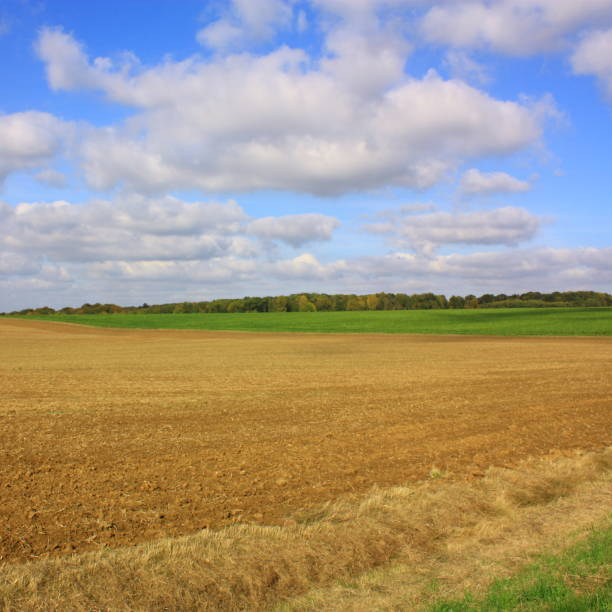 Plowed land in Picardie, France Plowed land in Aisne,Picardy region of France aisne stock pictures, royalty-free photos & images