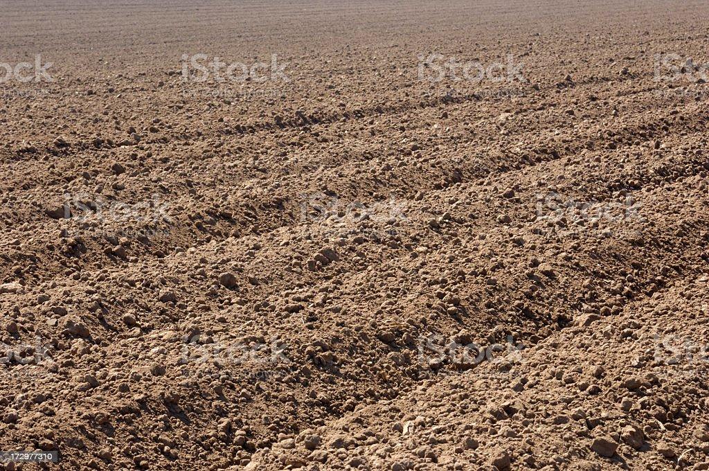 Plowed Rows of Fertile Soil stock photo