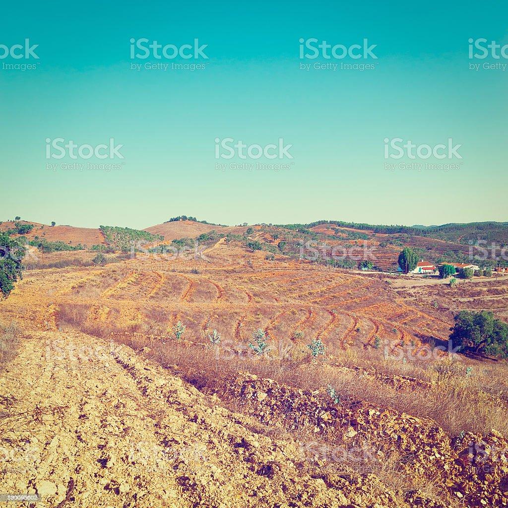 Arado Terrazas Foto De Stock Y Más Banco De Imágenes De
