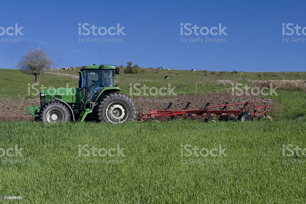 Plowing a Field royalty-free stock photo