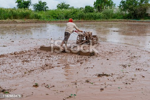 Plowing paddy, Farmer driving farm tractor to ploughing on rice field in the mud