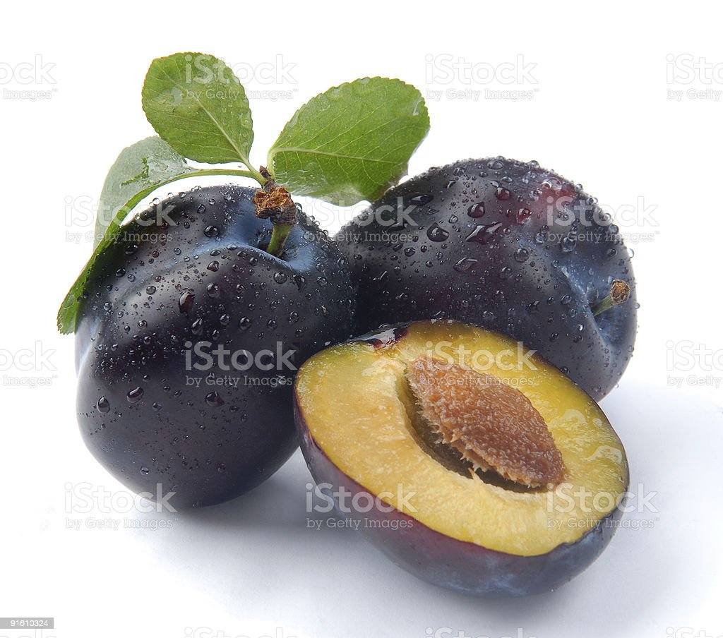 plum and a half royalty-free stock photo