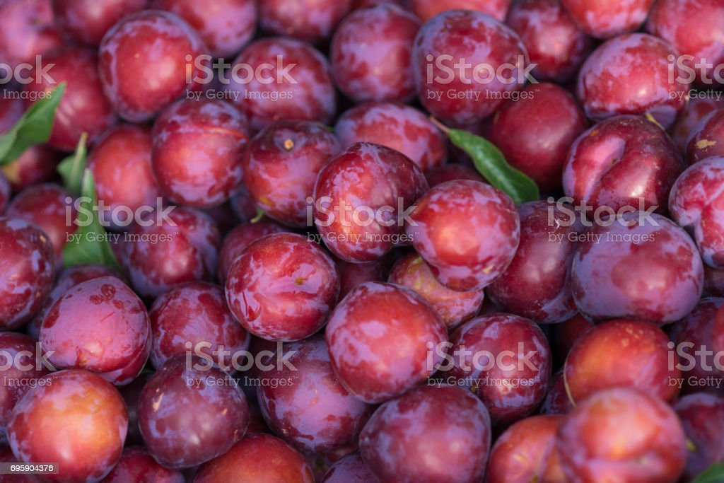 plum fruits on market stock photo
