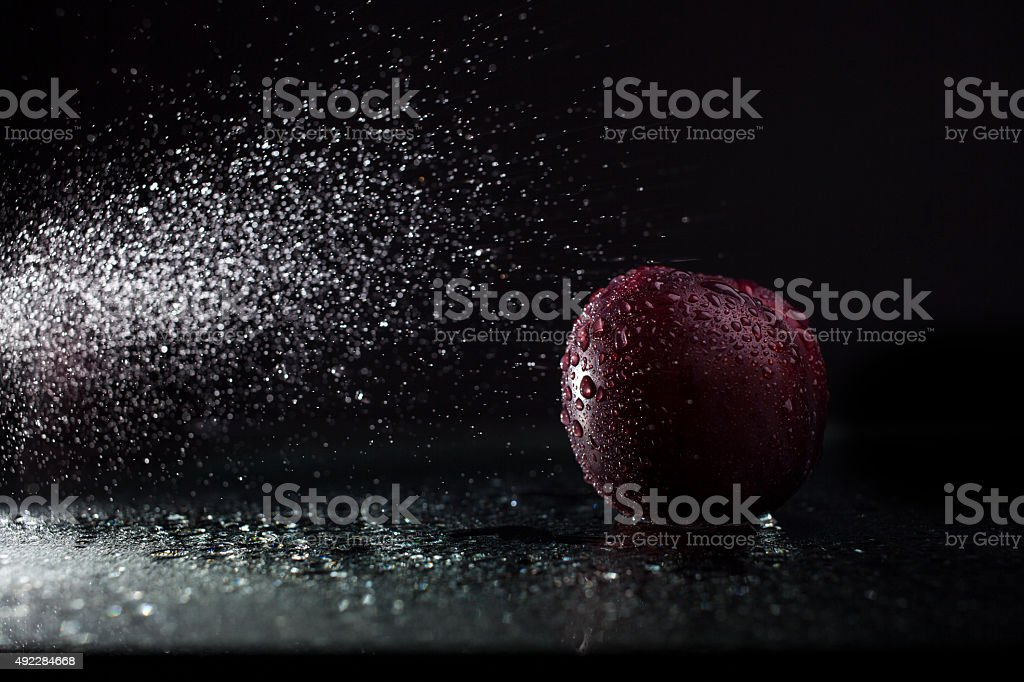 Plum in spray stock photo