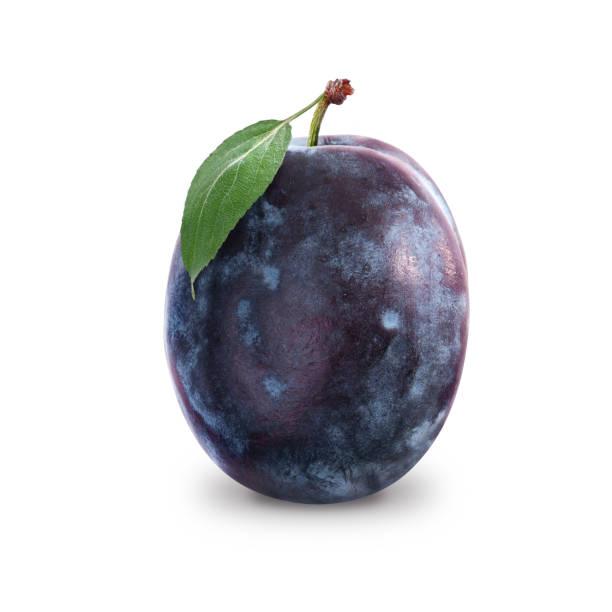 plum - icon set healthy foto e immagini stock