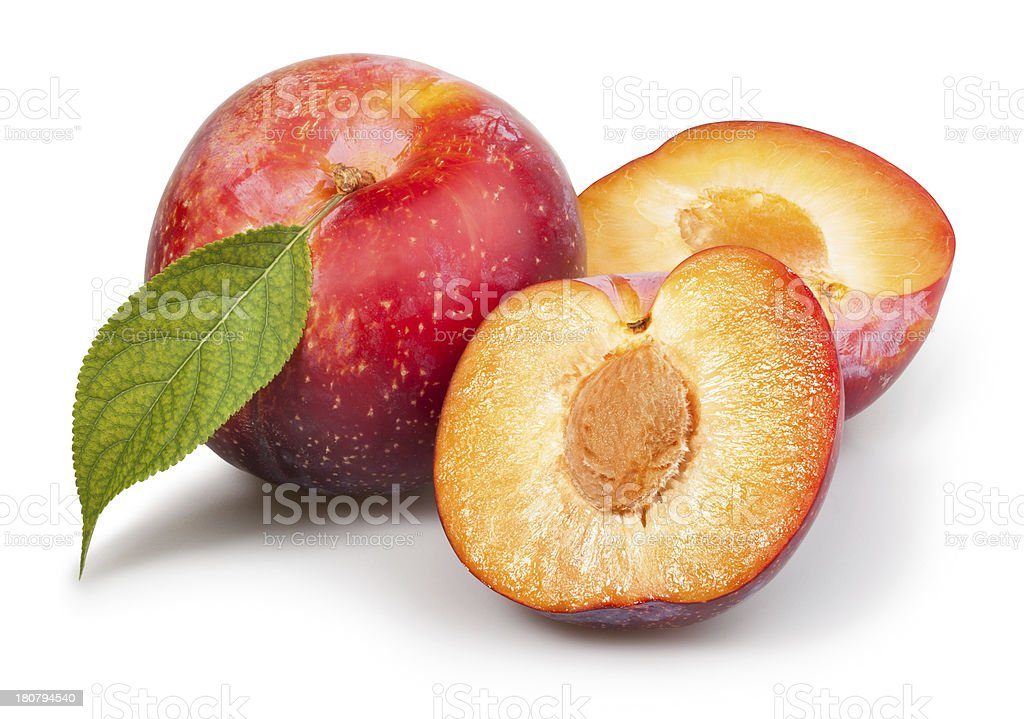plum red cut leaf royalty-free stock photo