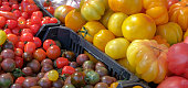 There are plum tomatoes, cherry tomatoes, vittoria, pomodorino. Vegetables from the farmers market. Eco products. Vitamins vegetarian diet. Healthy food. Bright natural vegetable background.