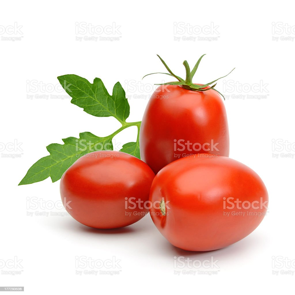 Plum tomatoes on a white background stock photo