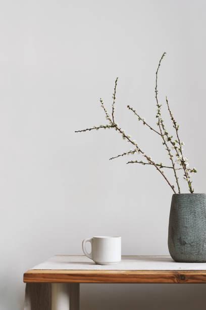 pflaume-zweige in vase - pflaumen wände stock-fotos und bilder