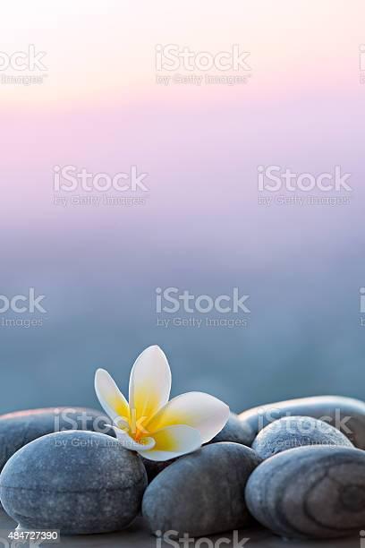 Plumeria flower and stones for spa background picture id484727390?b=1&k=6&m=484727390&s=612x612&h=mn7vlnp8u86ught3ariw55ssst3 xae6l8guoyx zws=