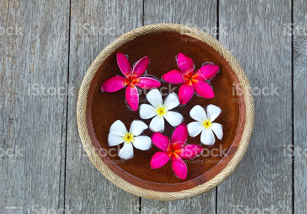 Plumeria flower floating in the ancient bowl royalty-free stock photo