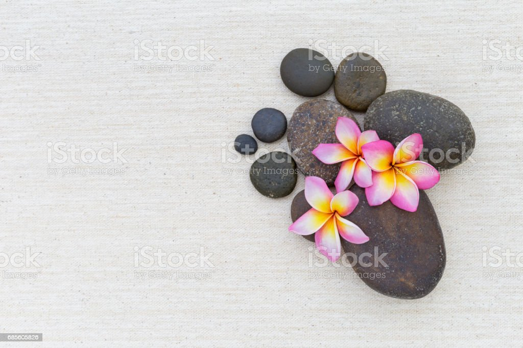 Plumeria flower on stone background royalty-free 스톡 사진