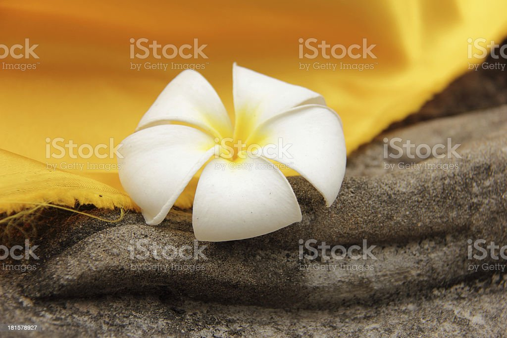 plumeria flower rested on a Buddha statue's hand royalty-free stock photo