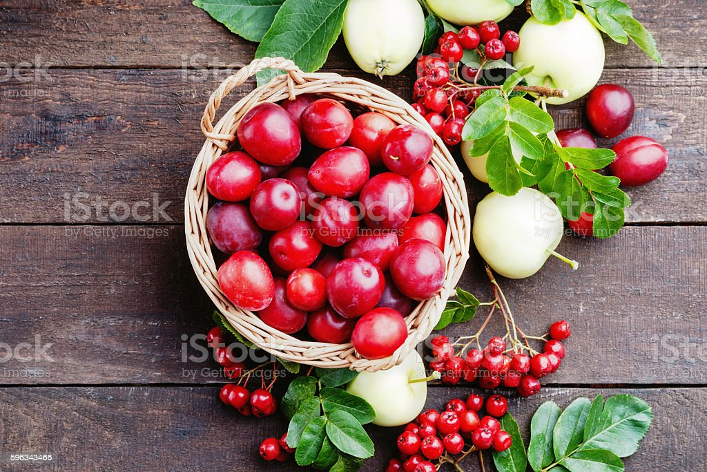Plums in a basket, apples and rowanberry royalty-free stock photo