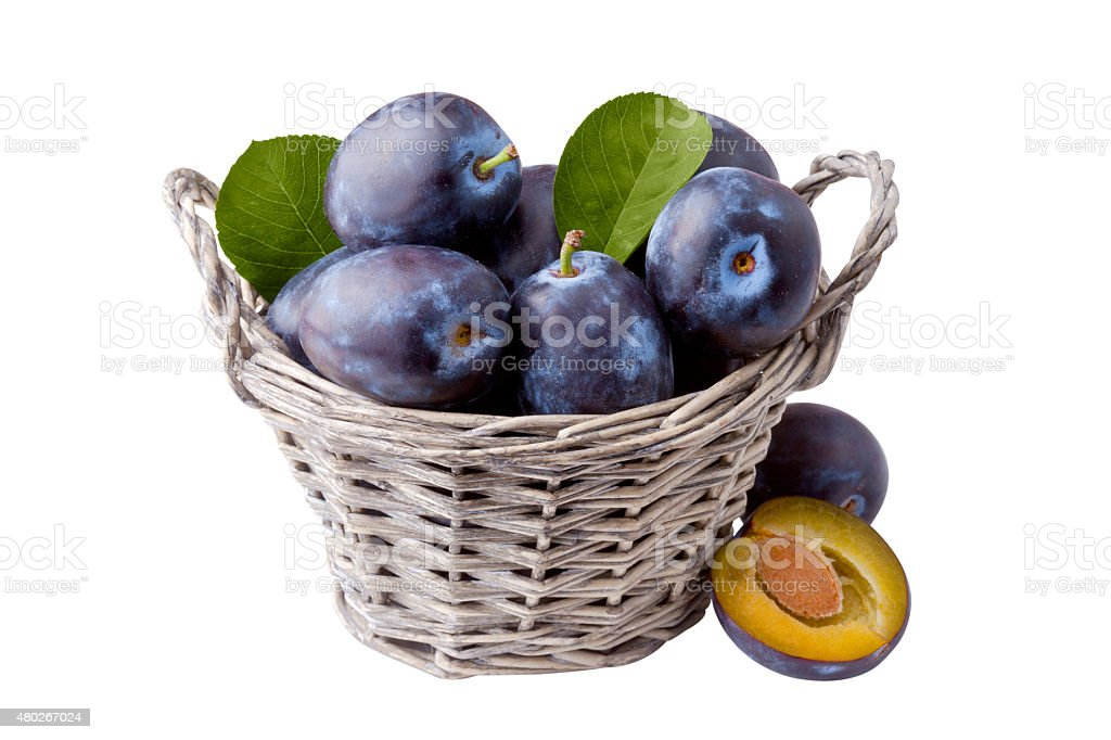 Plums in Basket Isolated on White stock photo