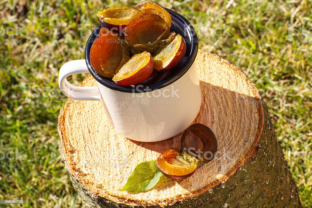 Plums in metallic mug on wooden stump in garden royalty-free stock photo