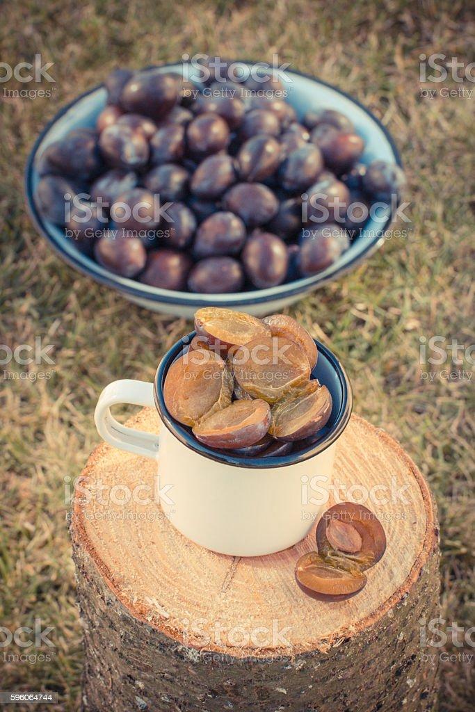 Plums in metallic mug on wooden stump in garden royalty-free stock photo