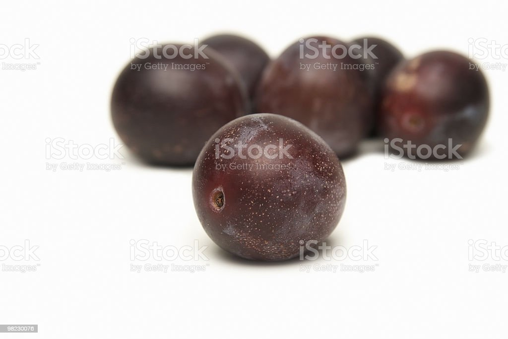 Plums. royalty-free stock photo