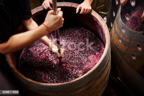 istock Plunging the grapes cap to extract color 526617659