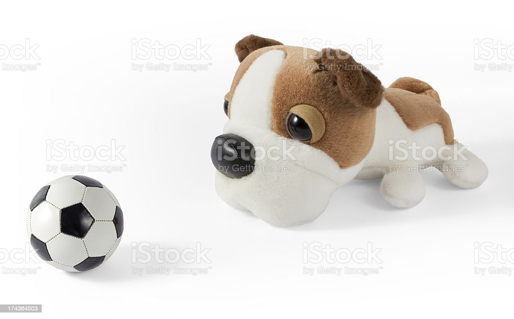Plush Dog and Soccer Ball royalty-free stock photo