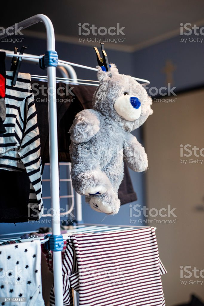 grey teddy bear plush toy hanging dry with laundry clothes after...