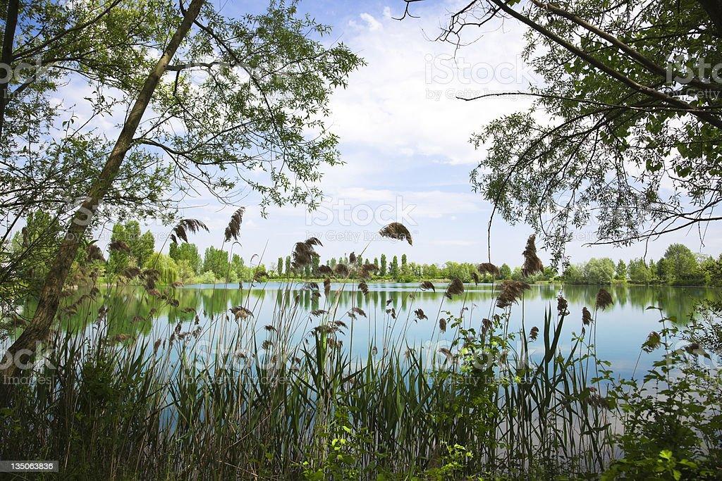 Po River Delta landscape in Italy stock photo