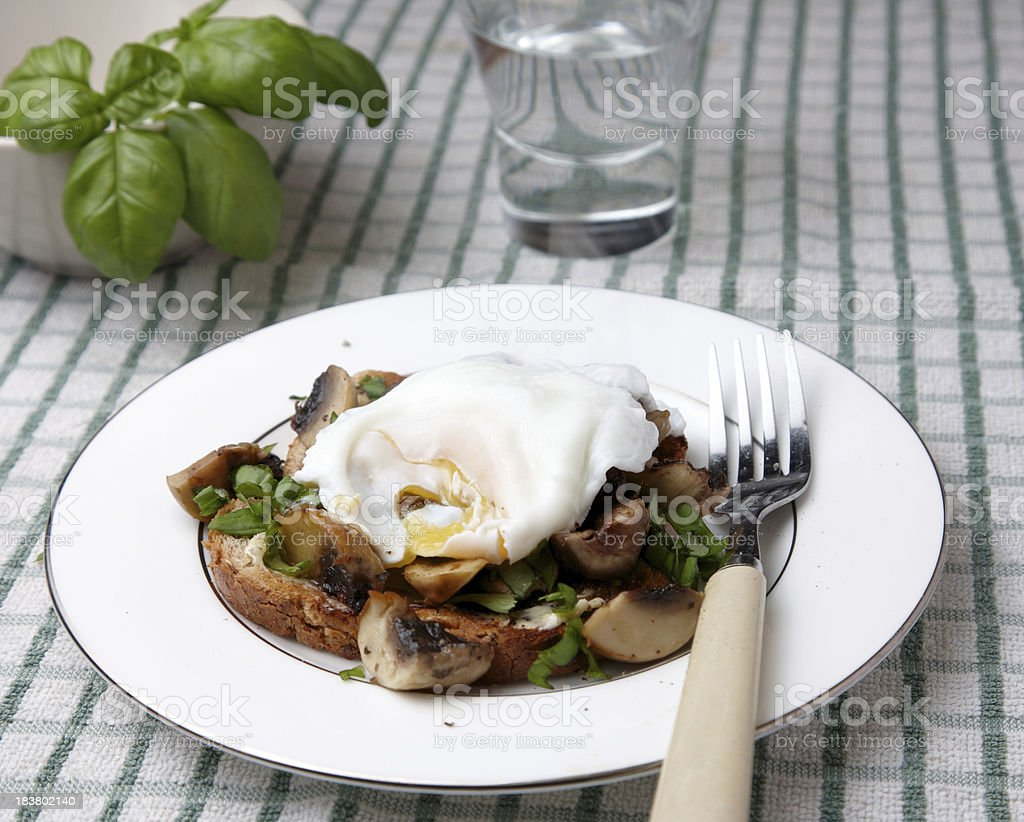 Poached egg over herby mushrooms on toast royalty-free stock photo
