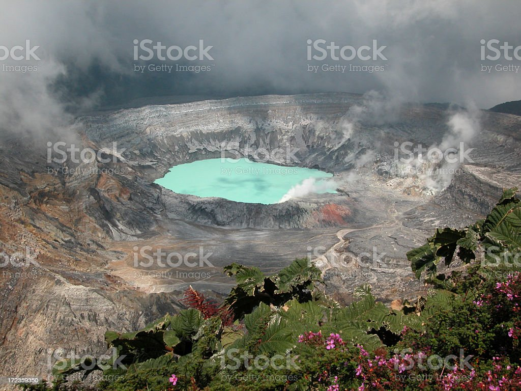 Poas Volcano Crater and Flowers, Costa Rica stock photo
