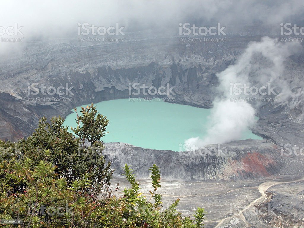 Poas Volcano Crater and Flowers stock photo