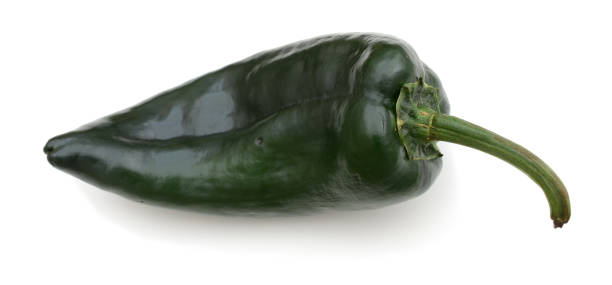 a poblano pepper isolated with a white background - green chilli pepper stock photos and pictures