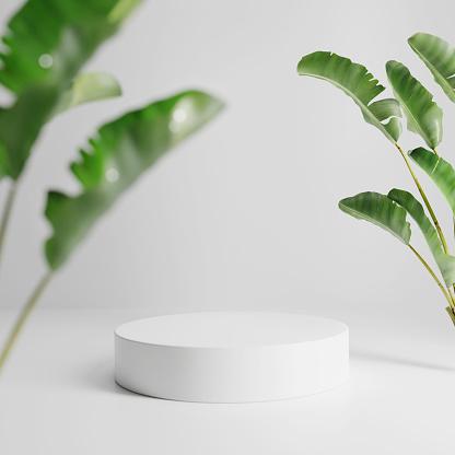 Podium display for product presentation. 3d render. 3D illustration.