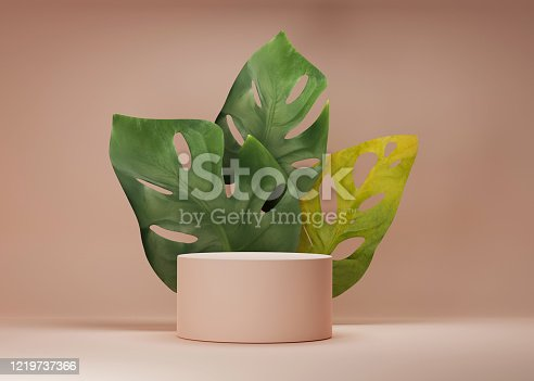 istock 3D podium display with monstra deliciosa and frosted glass copy space. Minimal beige background with pedestal and green plant leaves. Trendy natural product promotion banner. Simple tropical 3d render 1219737366