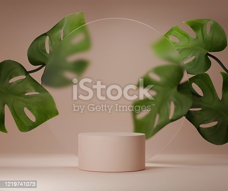 summer cylinder showcase with monstera palm leaf