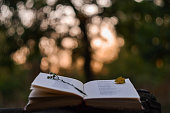 istock Poetry book at sunset 614125152