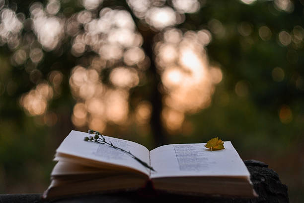 Poetry book at sunset picture id614125152?b=1&k=6&m=614125152&s=612x612&w=0&h=wwn63sapuzrppfiizgl r2ytququzmqx3z v9ebznjm=