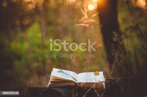istock Poetry book under tree 588356346
