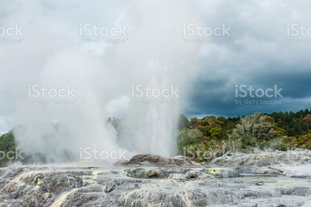 Pohutu and Prince of Wales geysers stock photo