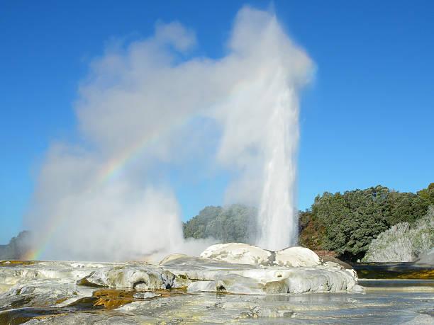 Pohutu Geyser in Rotorua Pohutu Geyser eruption with a rainbow over, Te Puia, Rotorua, New Zealand. rotorua stock pictures, royalty-free photos & images