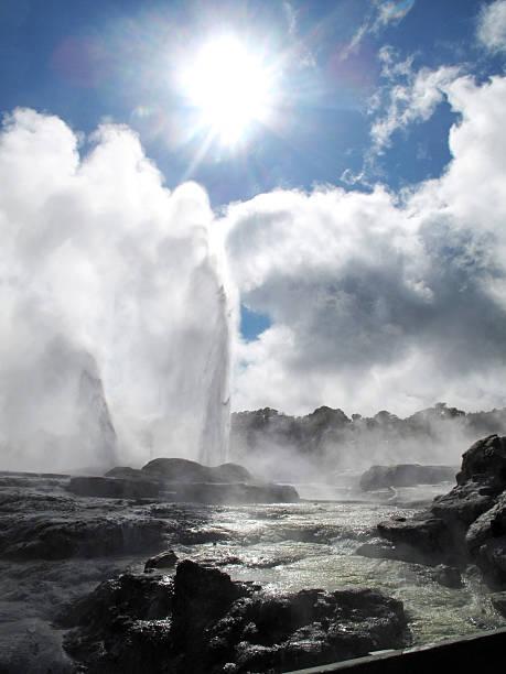 "Pohutu Geyser, Rotorua ""Whakarewarewa Thermal Area, North Island, New Zealand"" whakarewarewa stock pictures, royalty-free photos & images"