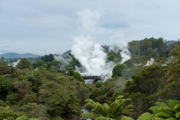 Pohutu Geyser,Rotorua,New Zealand Famous tourist attractions on New Zealand's North Island. whakarewarewa stock pictures, royalty-free photos & images