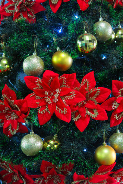filipino christmas star pictures images and stock photos - Filipino Christmas Star