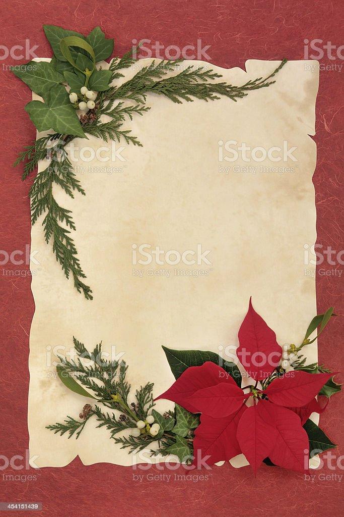 Poinsettia Decorative Border royalty-free stock photo